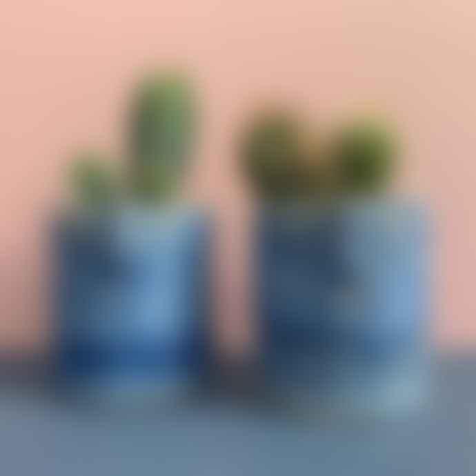Plantophile Mini Mid Blue Cactus Face Plant Pot