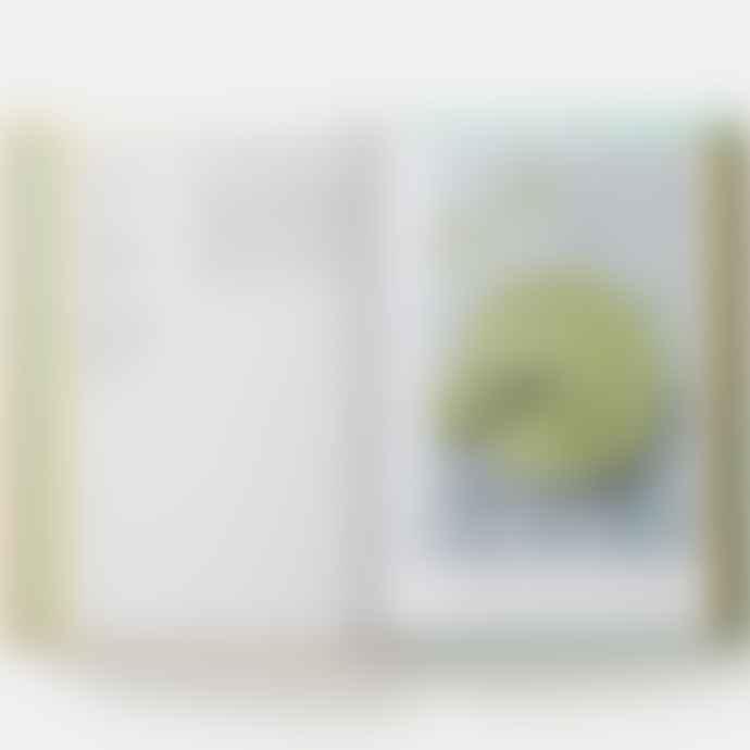 Phaidon Vegan: The Cookbook