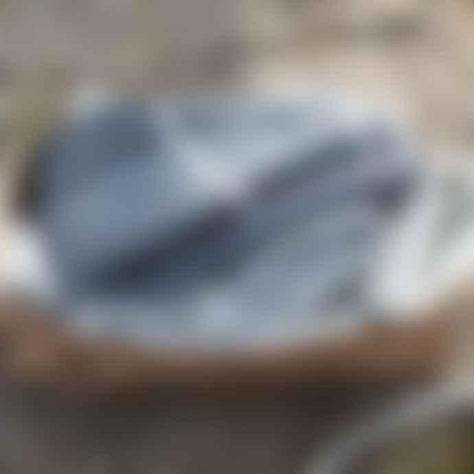 Lapuan Kankurit Tanhu Blanket - White