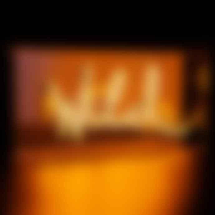 Locomocean Orange 'Wild' Neon Acrylic Box