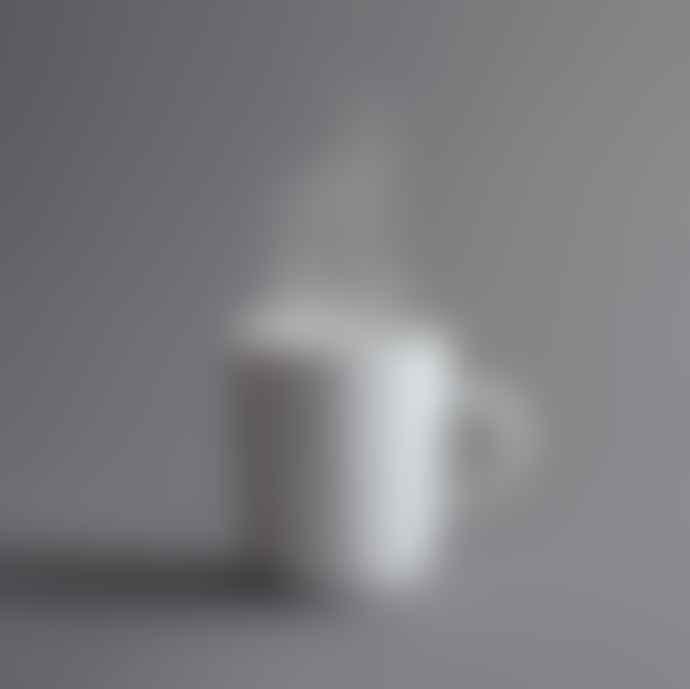 Kahla Porcelain Made In Germany Pronto Mug 0 35 L