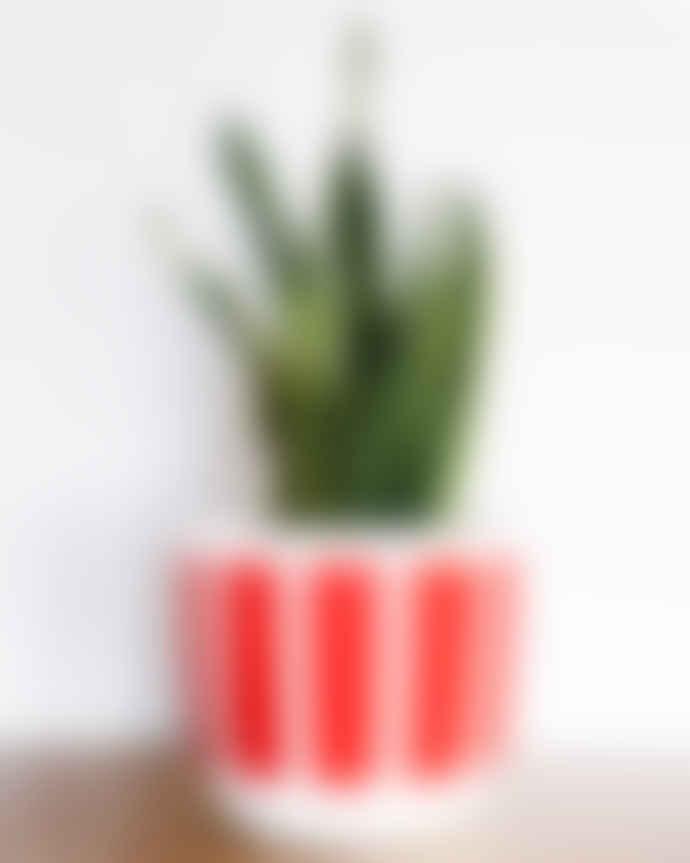Pow Pots Small Tigger Plant Pot, Red