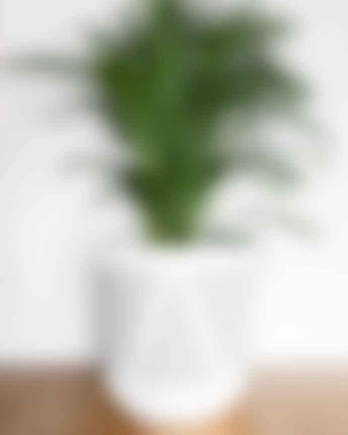 Pow Pots Small Wishbone Plant Pot, Soft Grey