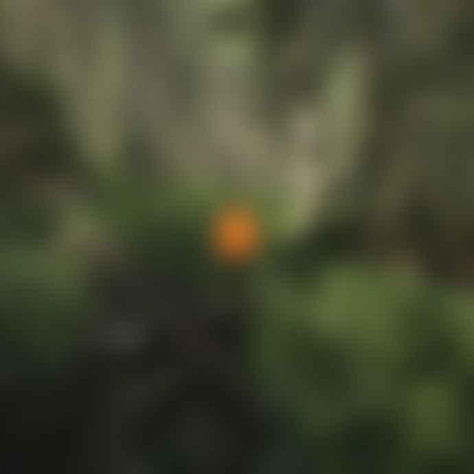 Zwitscherbox Zwitscherbox Birdsong Motion Sensor - White