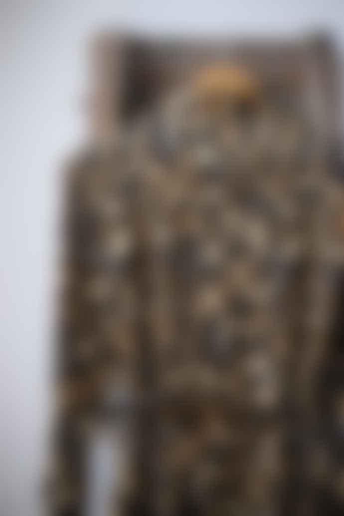 Scotch & Soda Leopard Print Belted Maxi Dress