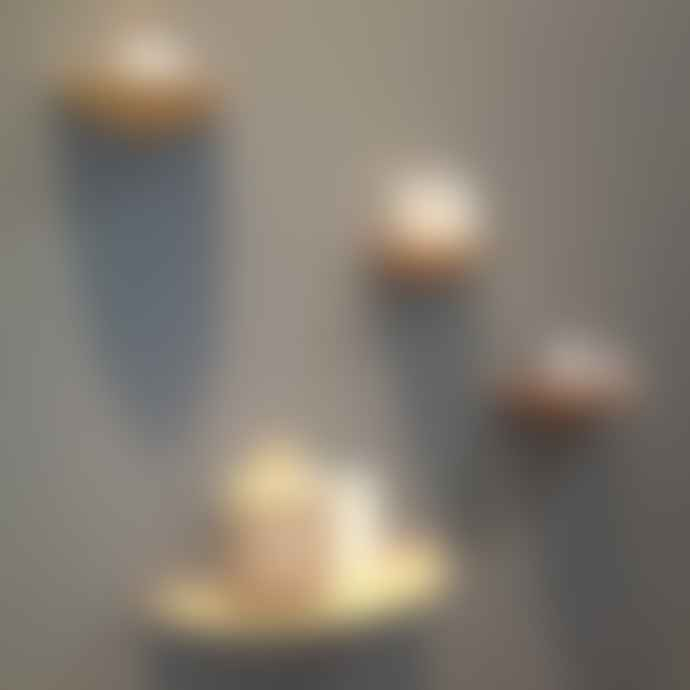 Menu  Gridy Fungi Small Shelf