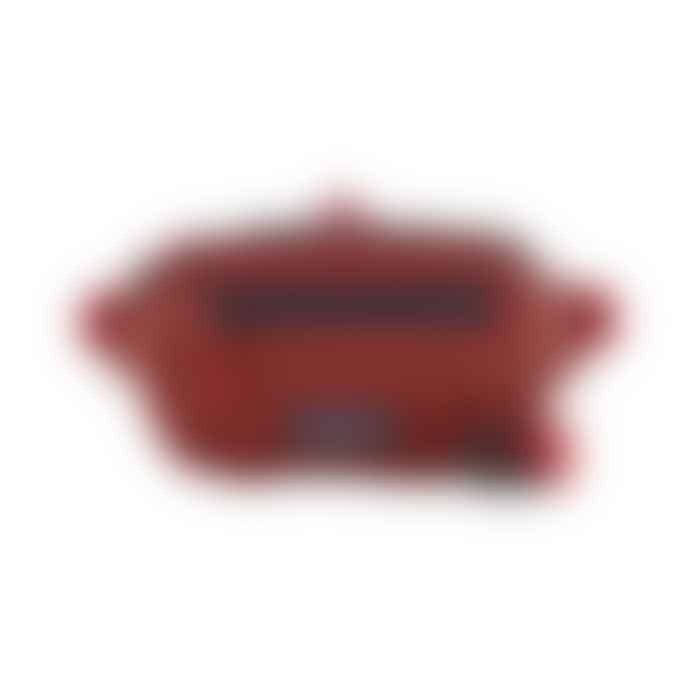 Patagonia Ultralight Black Hole Mini Hip Pack 1 L Rincon Red
