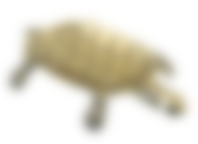 Parlane Gold Tortoise Dish