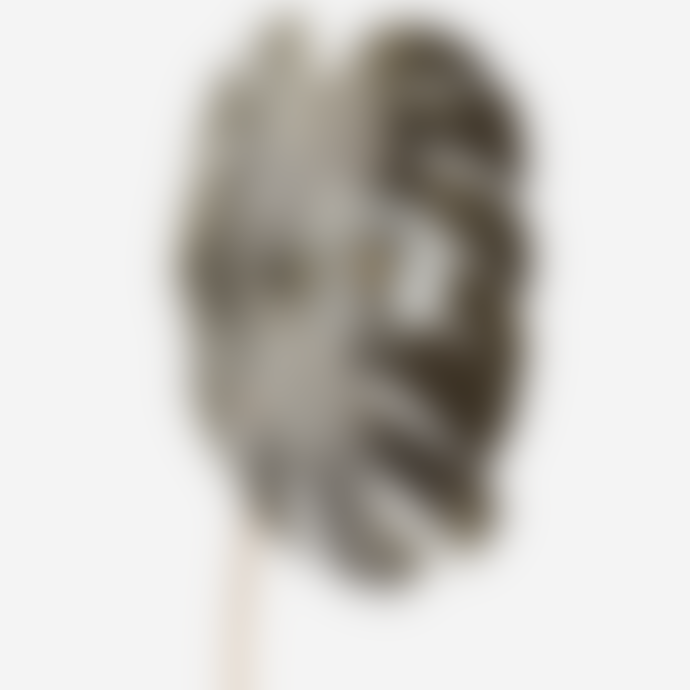 Madam Stoltz Oxidised Iron and Aluminium Leaf Wall Lamp