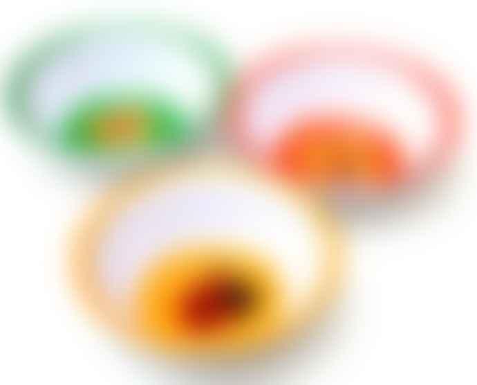 Retro Animal Design Melamine Bowls