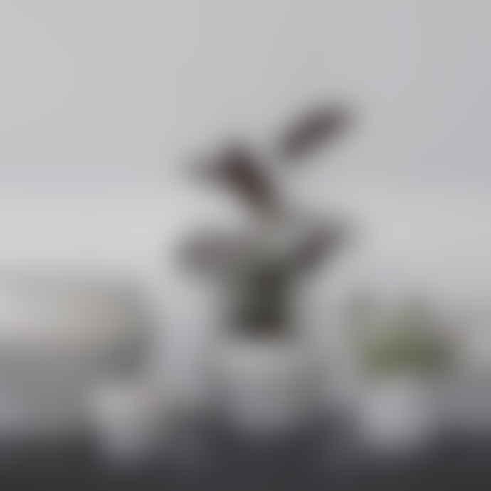 by Lassen by Lassen, Rimm Flowerpot, Medium, White