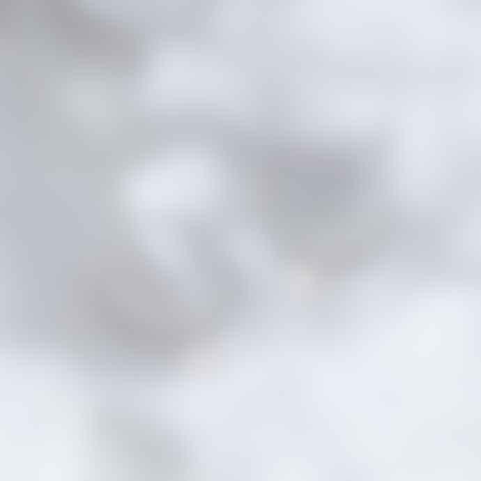 Posh Totty Designs Silver Large Hoop Moon Charm Earrings