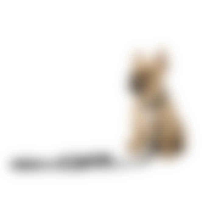 'Yeezy' Dog Lead (Puppy)
