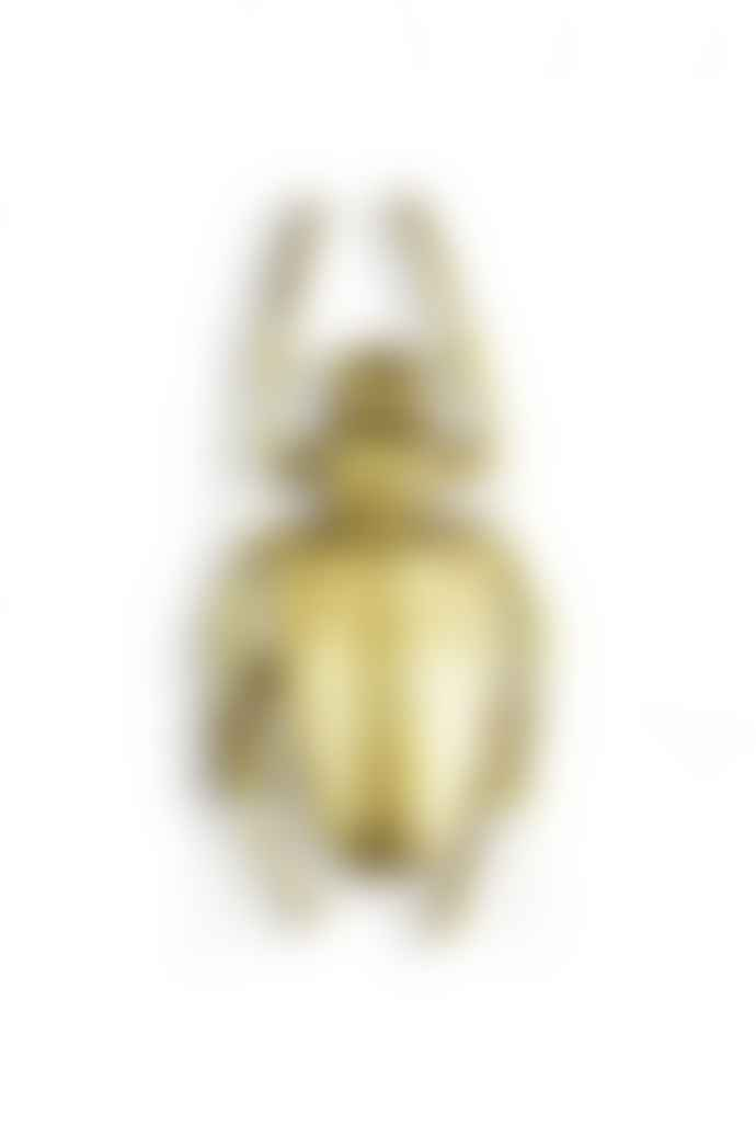 The Sue Parkinson Home Collection Large Gold Spotted Beetle Wall Decor