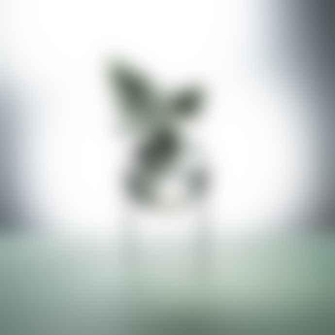 Studio About High Transparent Glass Flower Bubble Standing Vase