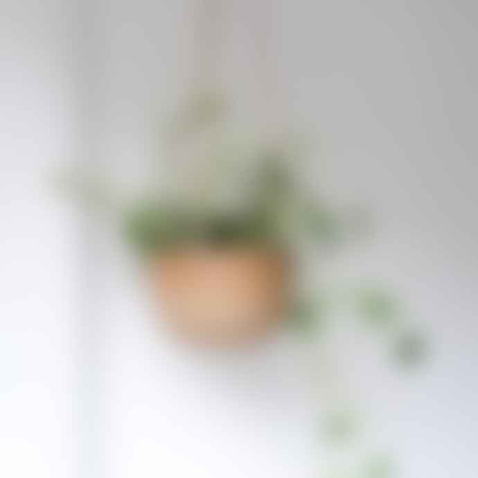 Dor & Tan Hand made Ceramic Hanging Planter