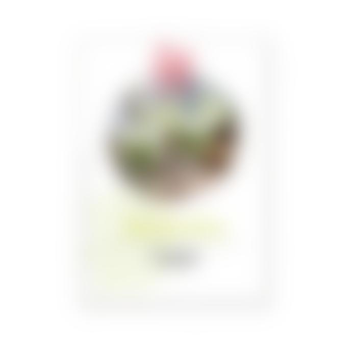 La Rochere Absinthe Tasting Set