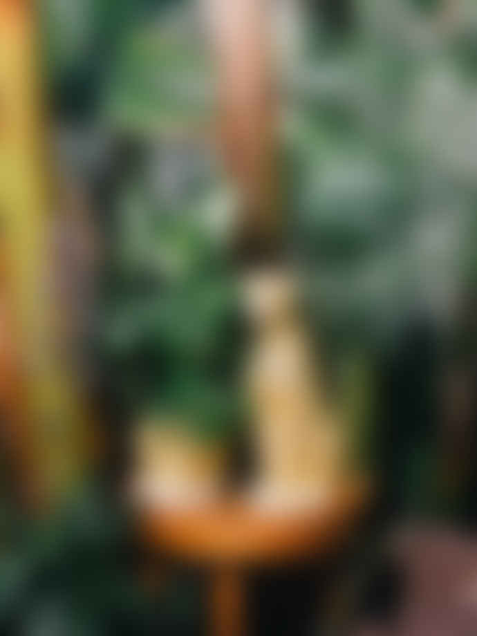 DOIY Design Planter pot cheetah - Urban jungle by DOIY