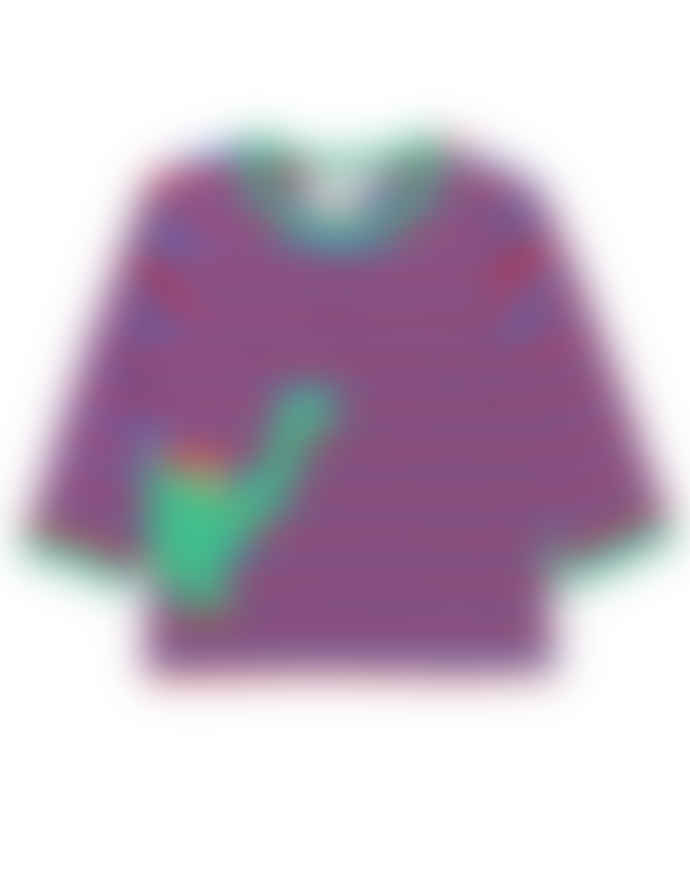 Toby Tiger Organic Dino Applique T Shirt