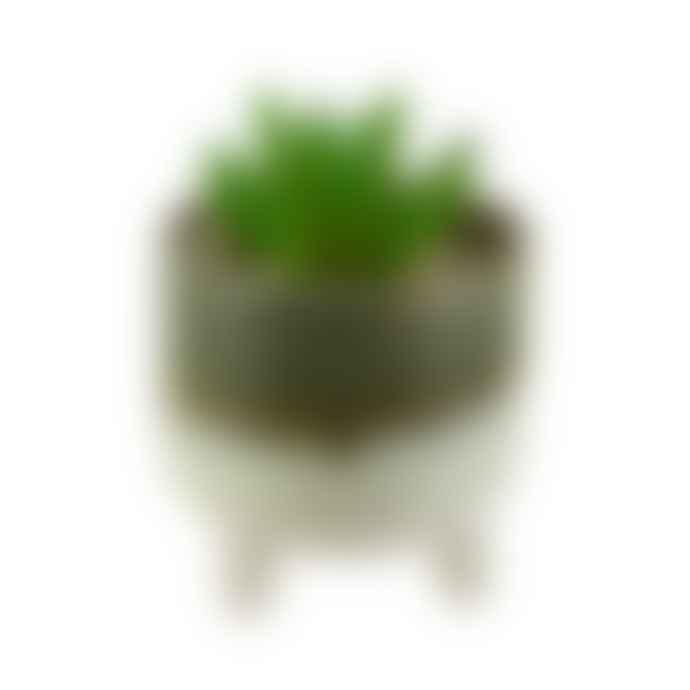 Sass & Belle  Mojave Glaze Green Planter