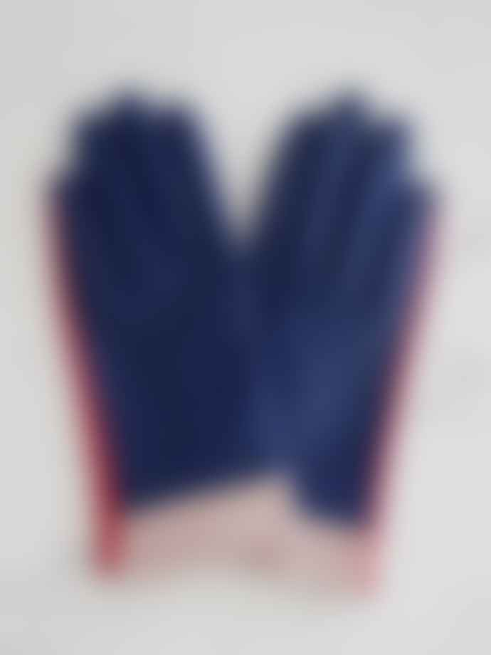 Mabel Sheppard Leather Gloves Navy Colourblock