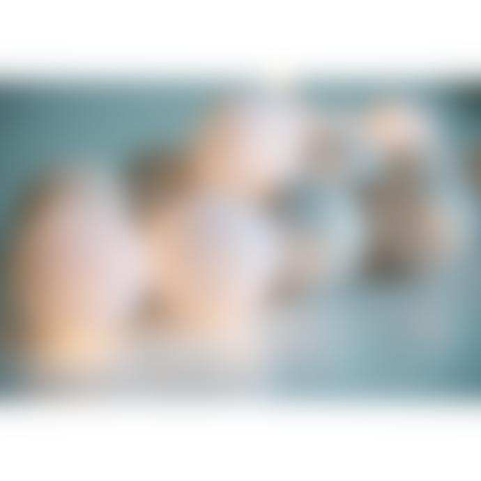 Irislights Silver 35 Balls Light Chain
