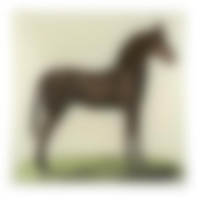 JOHN DERIAN Caramel Horse Un Vide Poche Square Decoupage Glass Tray
