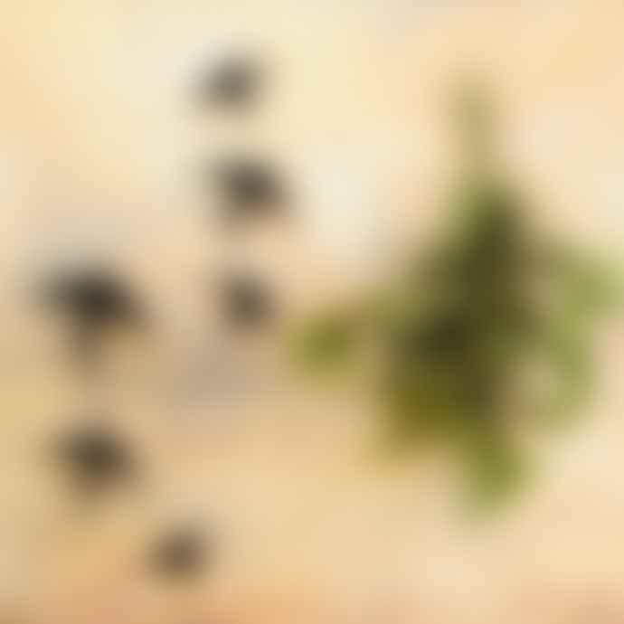 casa atlantica Ceramic Swallows Black Set Of 4