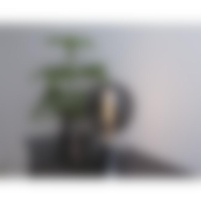 Star Trading 200mm Smoke Decoration LED Lamp