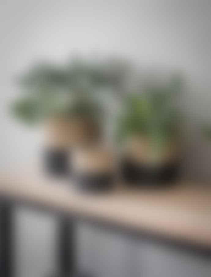Garden Trading Natural & Black Two Tone Jute Pot - Large