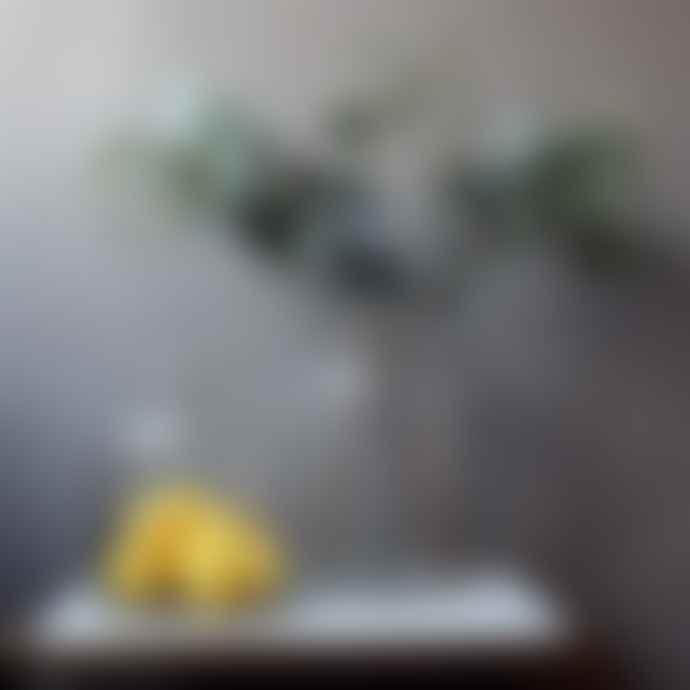 livs 40x76cm Spray of Eucalyptus Stem