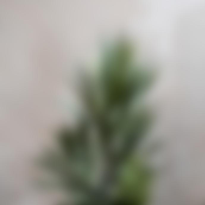 20x115cm Faux Yucca Tree in Black Pot