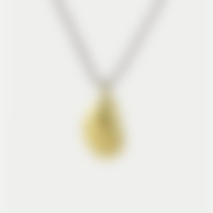 Studio MHL Studio MHL Gold Vermeil Closed Mussel Necklace