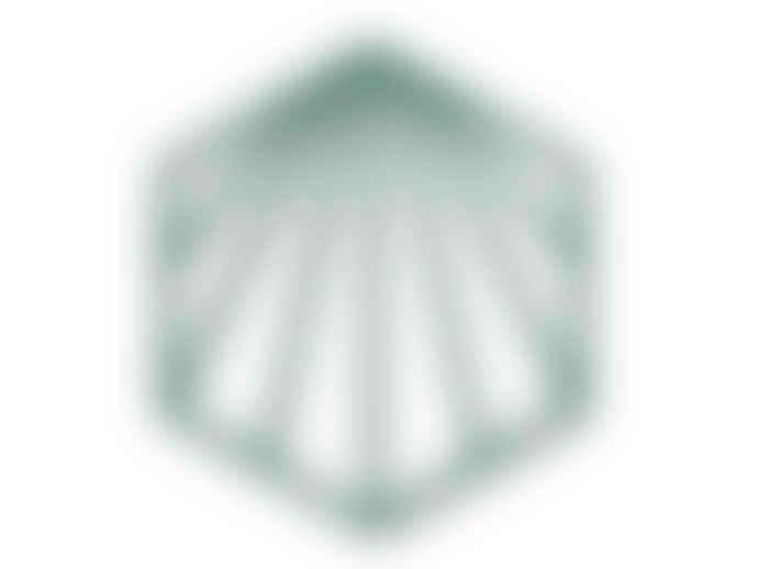 Zone Denmark Shell Silicone Trivet
