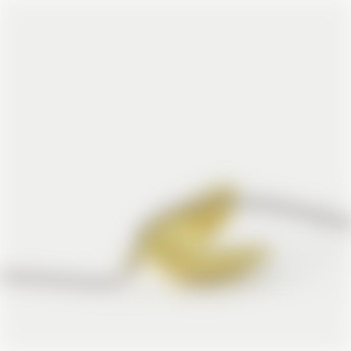 Studio MHL Studio MHL Gold Vermeil Open Mussel Necklace