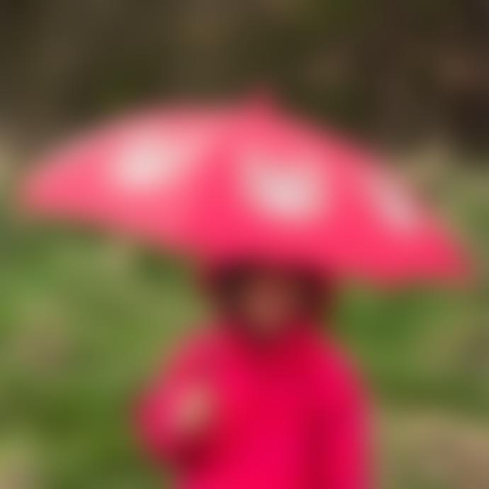 Rex London Nylon Bruno The Bear Kids Umbrella