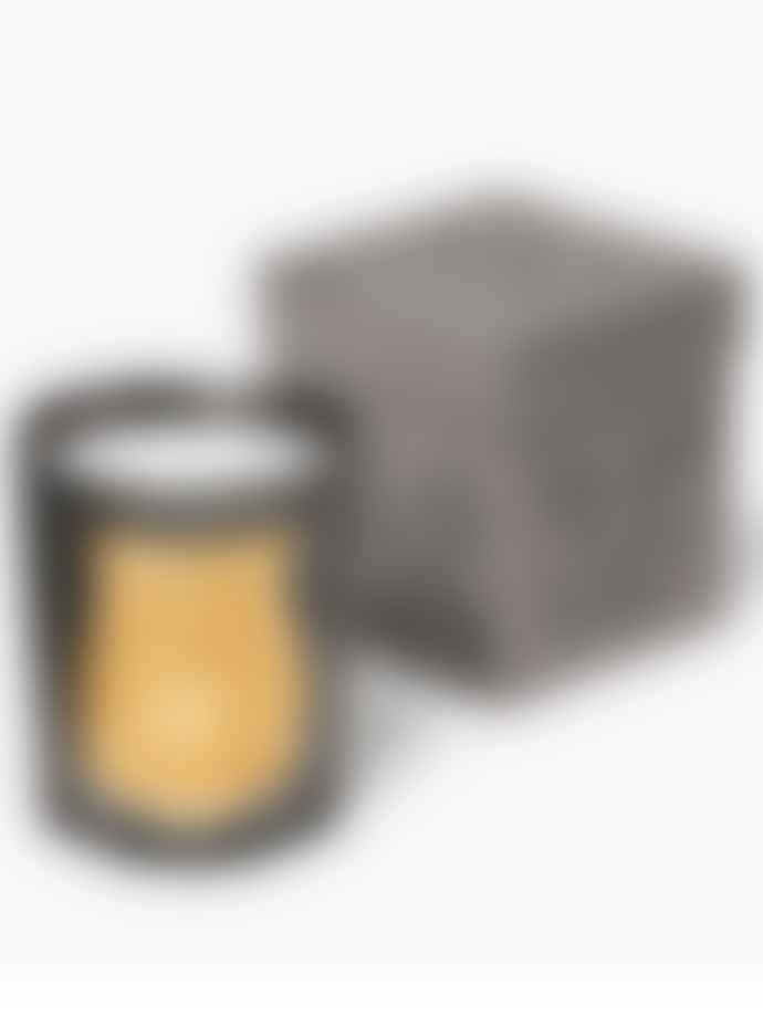 Cire Trudon Ernesto Scented Candle In Pewter