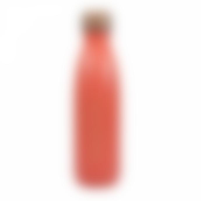 Half Moon Bay Stainless Steel Paddington Bear Thermal Bottle