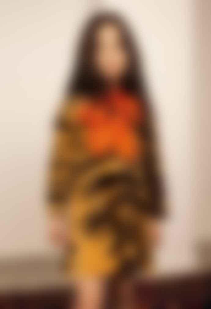 Mini Rodini Tiger Velour Dress Brown
