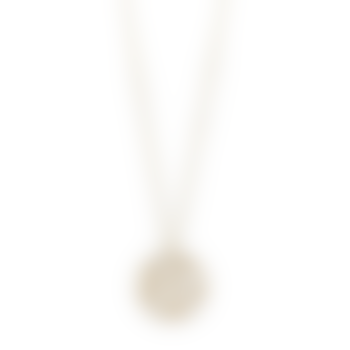 Pilgrim 40cm Gold Plated Brass Kiwa Branches Necklace