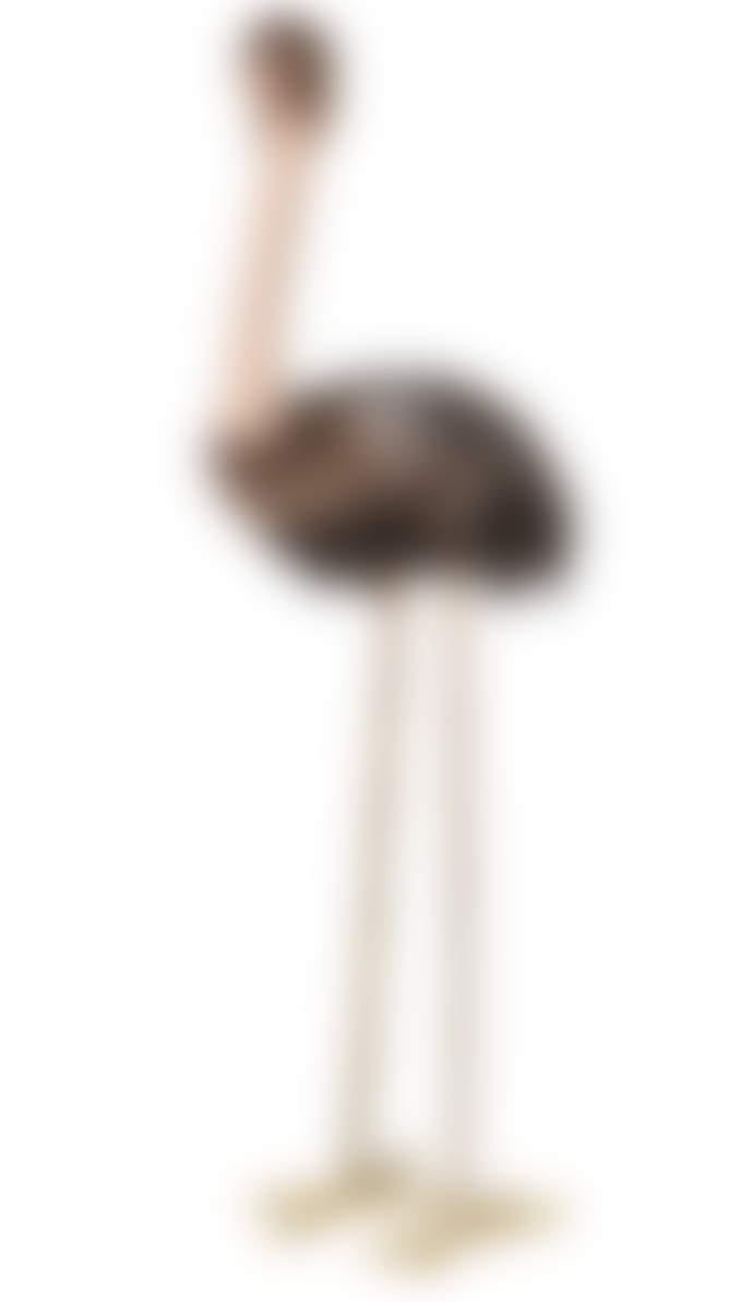Coach House Tall Feather Emu
