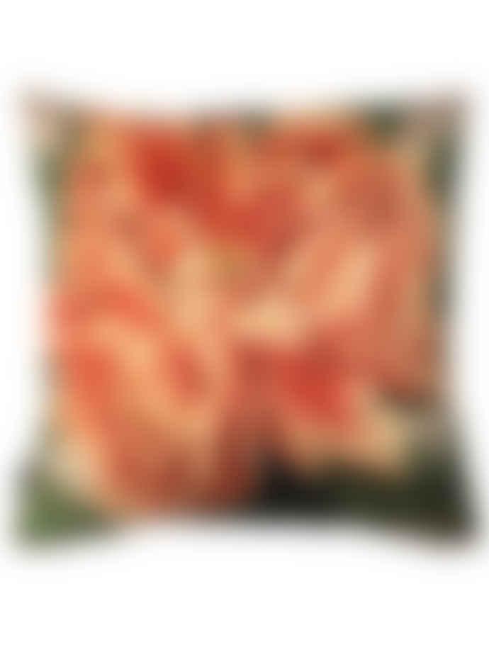Vanilla Fly 50 x 50cm Velvet Coral Peony Cushion
