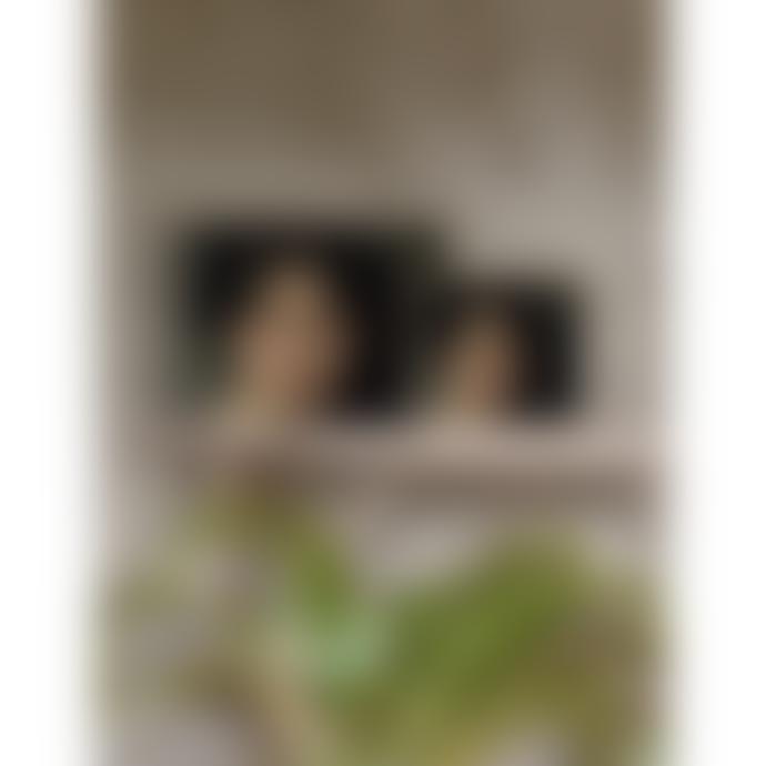 Vanilla Fly 20 x 25cm Nathalie Poster