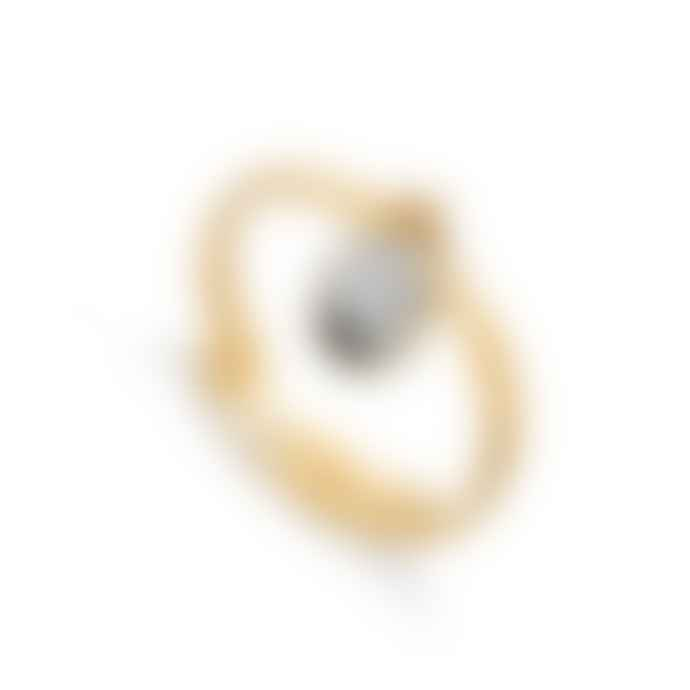 SVP Jewellery Rio White Striped Black Agate Gold Vemiel Ring