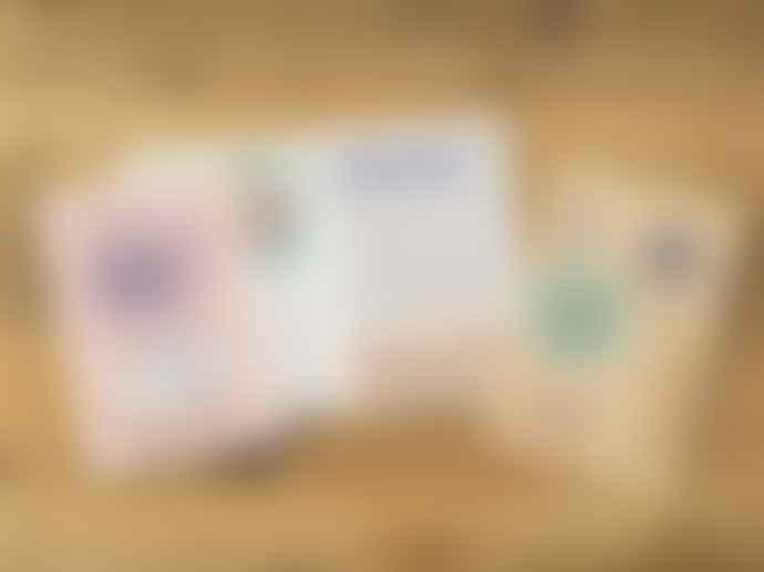 Traveler's Company 2020 Weekly Diary Passport Size Travelers
