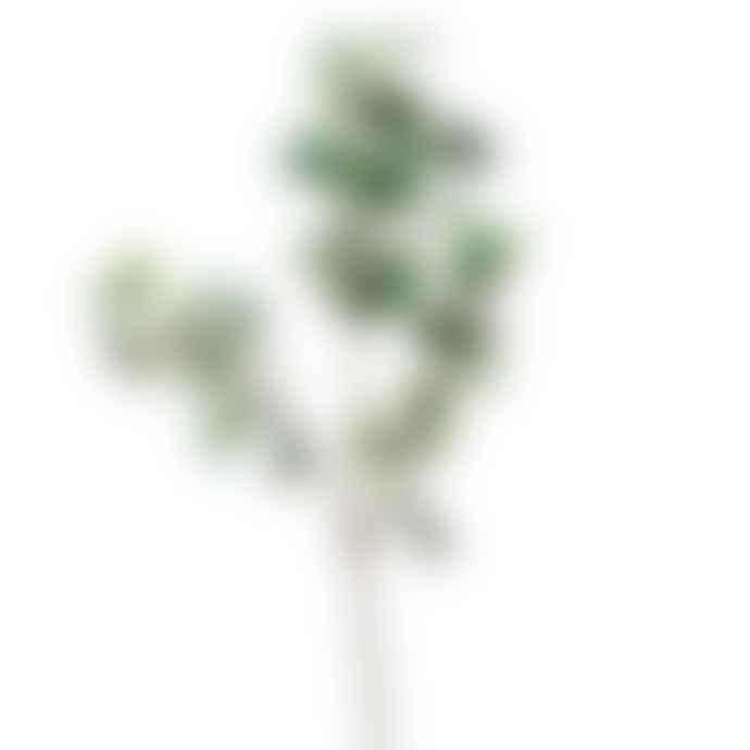 Wyld Home Ivy Spray Green