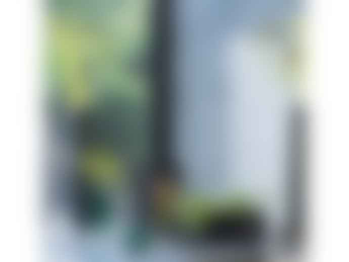 LSA International Stems Lantern/Vase