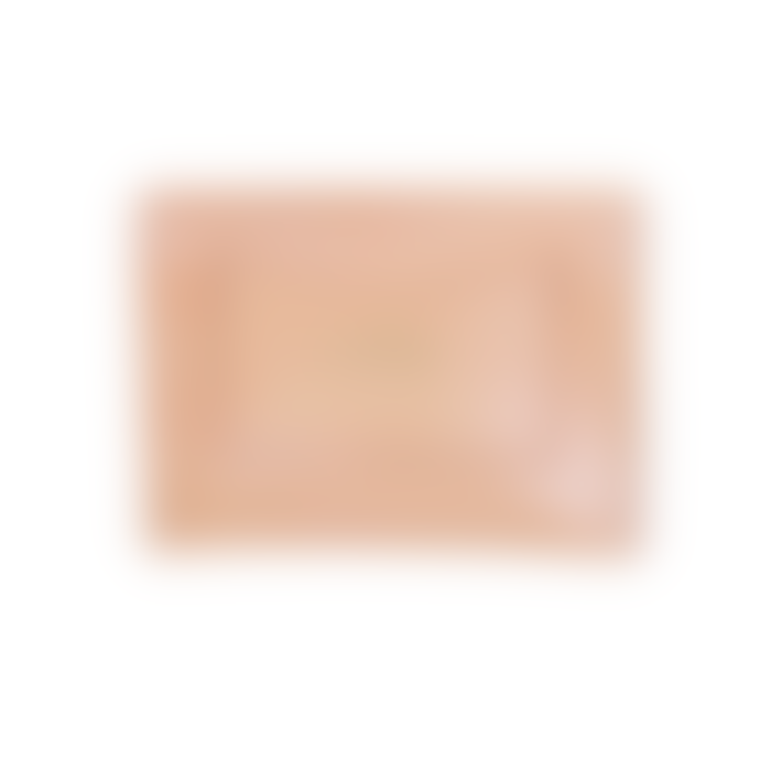 Craie 14 x 10cm Seashell Leather Travel Clutch