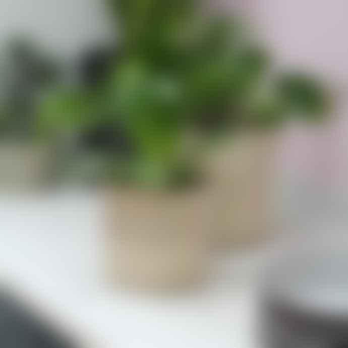 Nordal Large Jute Basket/Planter