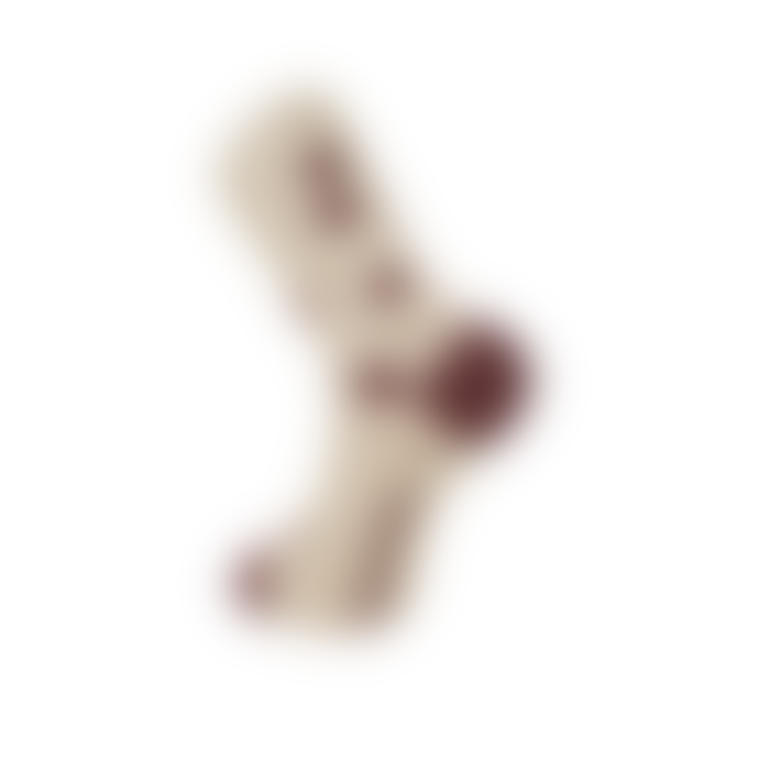Komodo UNISEX KUSAMA DOT Camel Organic Cotton Socks
